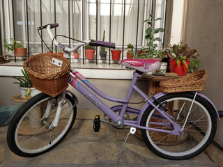Bicicleta De Nena Marca Musetta Rodado 20