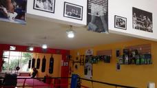 Gimnasio De Boxeo Recreativo