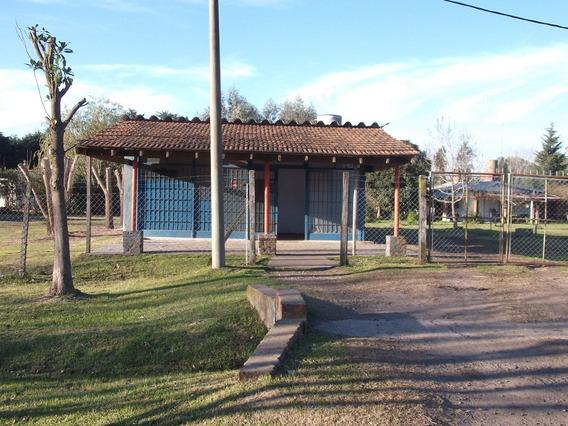 Vendo/alquilo Terreno Con Local Y Galpón Ideal Para Deposito