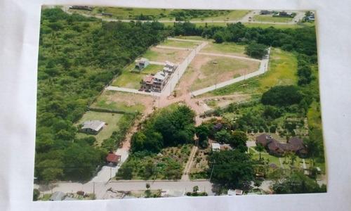Terreno Em Campo Novo - Lu429497