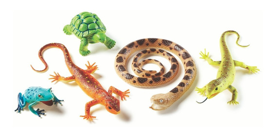 Jumbo Reptiles Y Anfibios