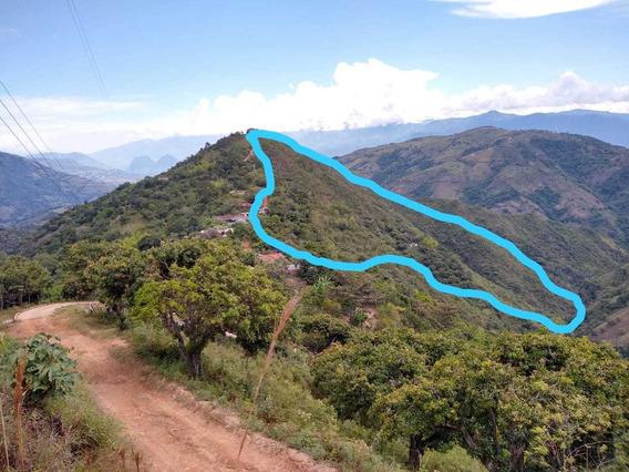 Finca En Santa Barbara Antioquia, 18ha