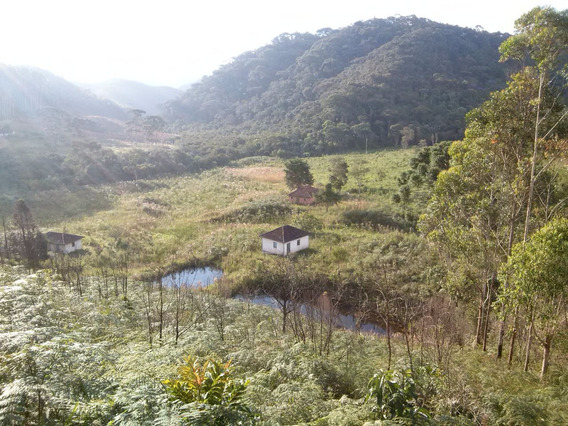 Sítio Em Liberdade Mg , Sentido Passa Vinte , Com 40 Ha , 03 Casas Simples , Lago , Nascente , Muito Bom De Água, Área Boa Para Plantio De Oliveiras. - 380