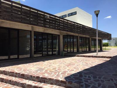 Desarrollo Plaza La Vista - Locales Comerciales