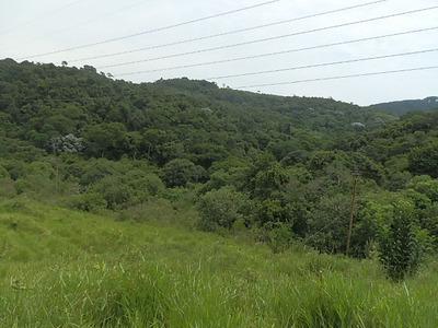 Area De Compensação Ambiental