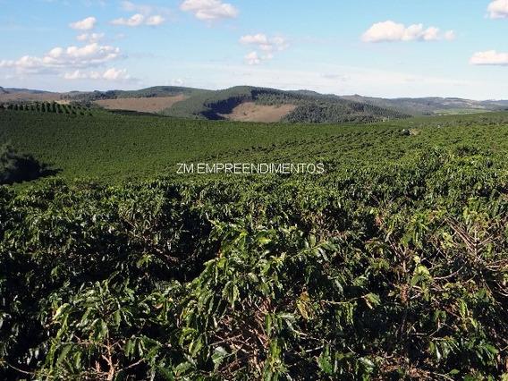 Fazenda - Fa00010 - 32773480