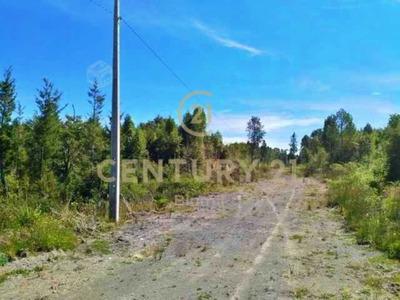 Avenida Los Alerces (ruta V-615) Km 12.5