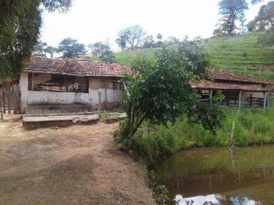 Fazenda Rural À Venda, Paineiras, Redenção Da Serra. - Fa0134