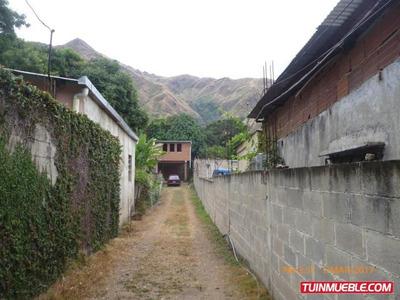 Casas En Venta, El Castaño Cod Flex 17-3535 Mg