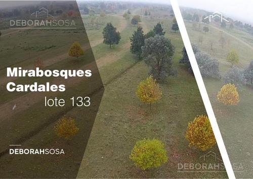 Excelente Lote Nro 133: Mirabosques Cardales Etapa 1 -  La Reserva Cardales.