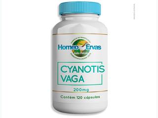 Cyanotis Vaga 200mg 120 Cápsulas