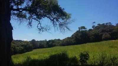 D Terrenos Em Ibiúna Cercado Pela Natureza E Demarcados!