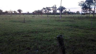 Finca En Arauca Se Vende Sector Javillal Esmeralda