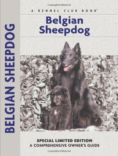 Guía Comprensiva De Los Dueños Del Perro Pastor Belga