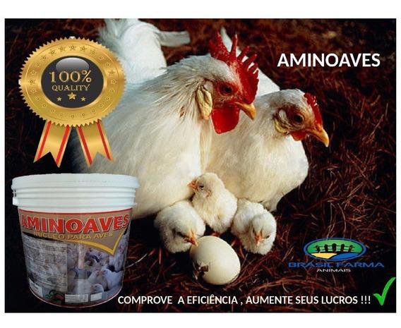 Núcleo Para Ração Ovos Galados Chocadeira Índio Gigante Aves