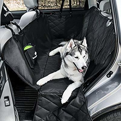 Traslado Transporte Viajes Con Mascotas Larga Distancia