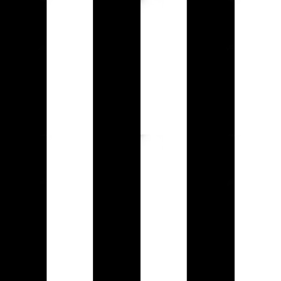 Papel Muresco Vinilizado Amarie Raya Negra 361 Soul