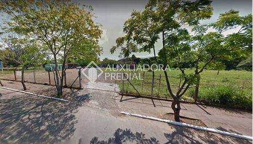 Imagem 1 de 1 de Terreno - Centro - Ref: 270300 - V-270300