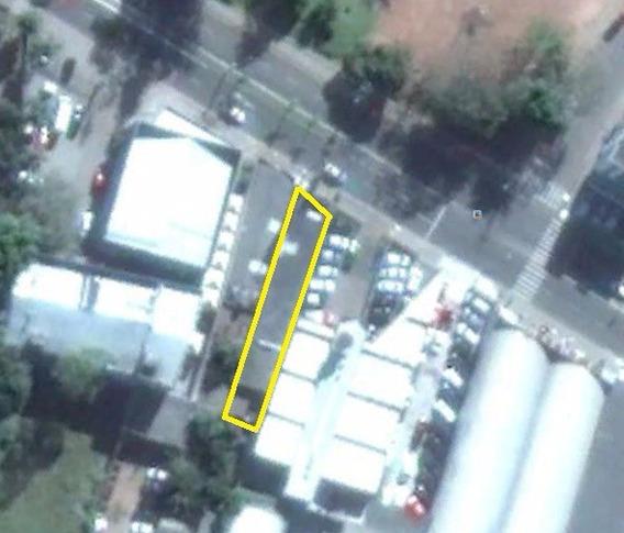 Area - Sao Geraldo - Ref: 981 - V-981