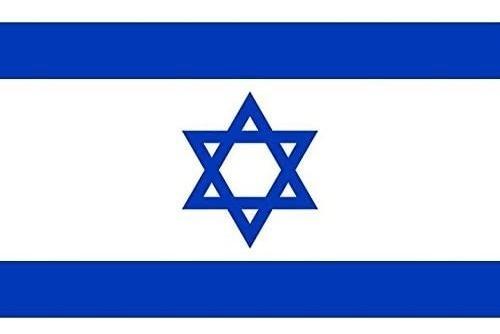 Imagen 1 de 1 de Bandera De Israel 90 X 150 Cm