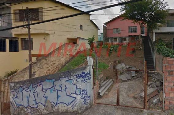 Terreno Em Freguesia Do Ó - São Paulo, Sp - 318047