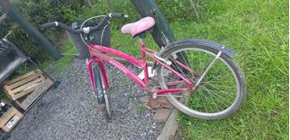 Bicicleta Dama Rodado 24