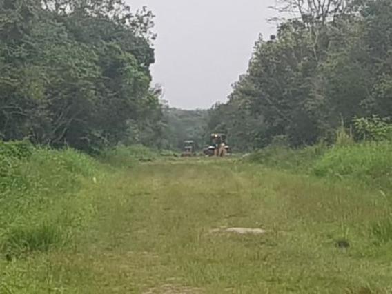 Terreno Facilitado Em Itanhaém Litoral Sul De Sp .