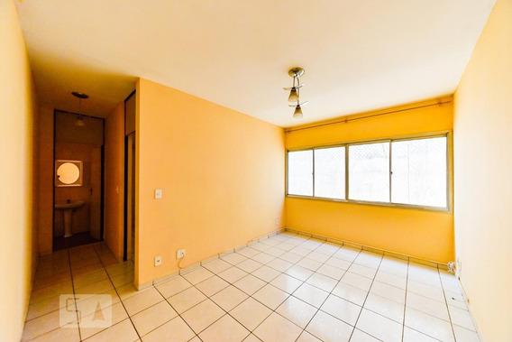 Apartamento Para Aluguel - Vila Lusitânia, 1 Quarto, 55 - 893018206