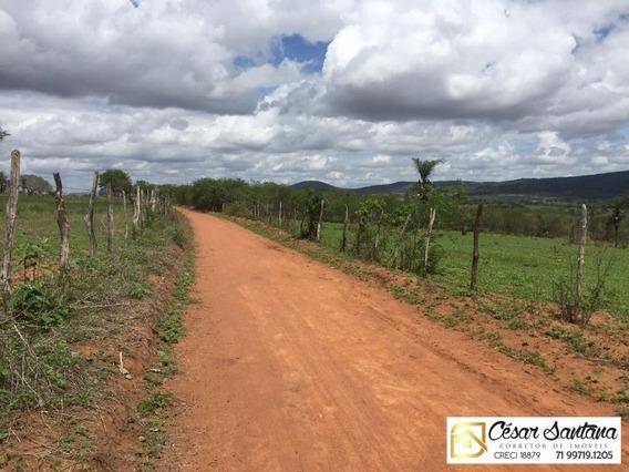 Fazenda Em Euclides Da Cunha Com 105 Hectares - Fa00003 - 34427274