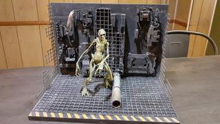 Alien Vs Predator Maqueta Para Neca Leer Bien Escucho Oferta
