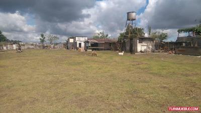 Terrenos En Venta San Antonio Las Polonia