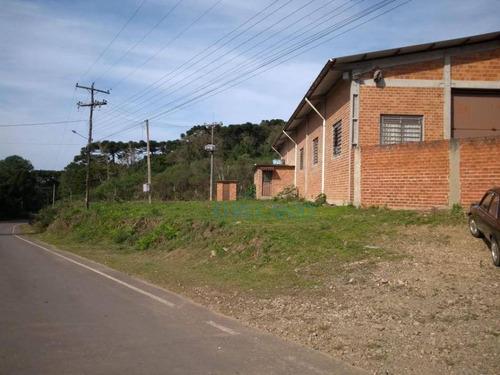 Terreno À Venda, 5000 M² Por R$ 1.600.000 - Mato Queimado - Gramado/rs - Te0724