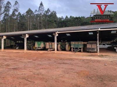 Sítio Com 4 Dormitórios À Venda, 563500 M² Por R$ 2.800.000 - Zona Rural - Campo Largo/pr - Si0001