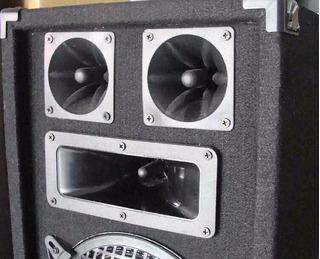 Parlante Con Lector De Usb Radio Fm Y Entrada Para Pc