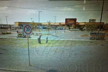 Locales En Renta En El Sabinal, Juárez