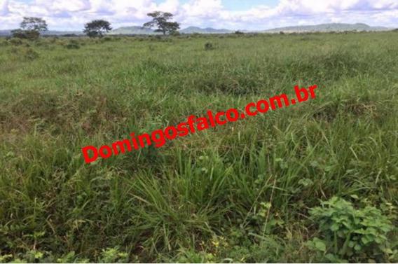 Venda - Fazenda - Zona Rural - Cumaru Do Norte - Pa - D0214