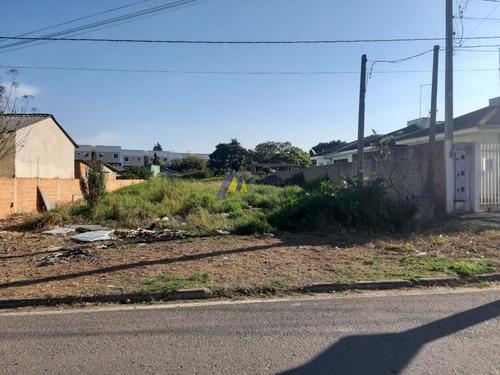 Imagem 1 de 10 de Lote / Terreno Em Campina Da Barra  -  Araucária - 446