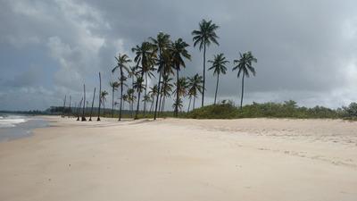 Casa Em Barreiras Coruripe, À 10 Minutos Da Praia
