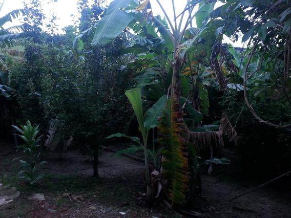 Rural Para Venda, 2 Dormitórios, Granja Patury - Guaratinguetá - 1280