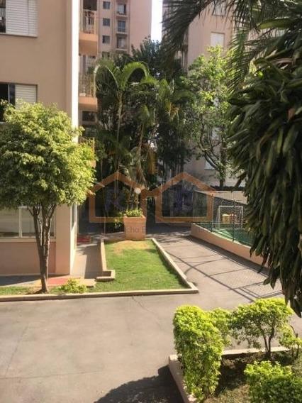 Apartamento Em Condomínio Padrão Para Locação No Bairro Cangaíba, 2 Dorm, 1 Vagas, 50 M - 2965