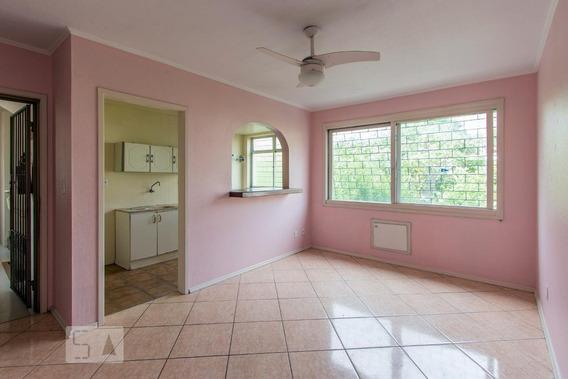 Apartamento Para Aluguel - Tristeza, 1 Quarto, 51 - 893053799
