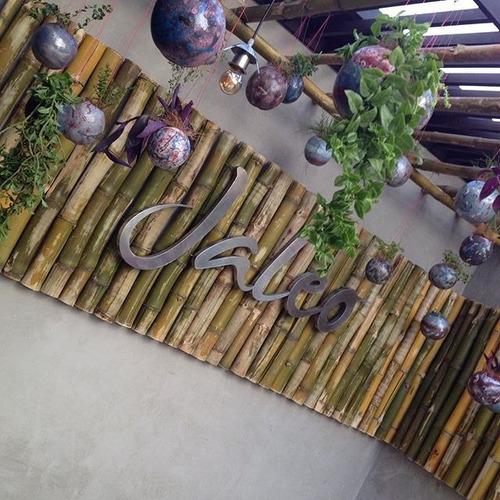 Jardines Verticales Barquisimeto