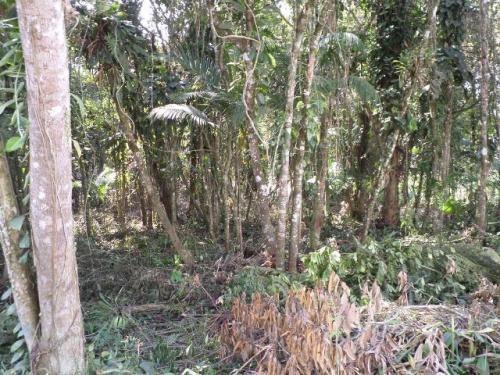 (ref: 4133) Terreno De Chácaras- Itanhaém/sp - Gaivota
