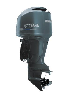 Imagem 1 de 2 de Motor De Popa Yamaha F 250 Hp  Injeçao  4 Tempos