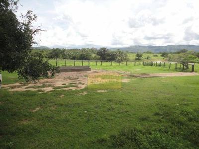Fazenda Rural À Venda, Zona Rural, Paranã. - Fa0027