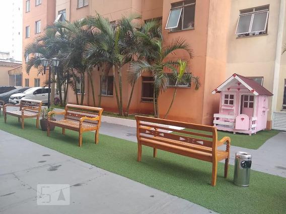 Apartamento À Venda - Brás, 2 Quartos, 49 - S893082227
