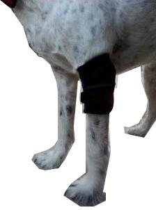 Soporte De Codo Codera Para Perros Ortopedia Canina