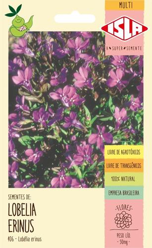 Sementes De Lobélia Erinus Flor