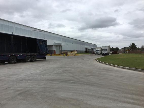 Depósito Logistico 2.500 M2 Garín - Pacheco
