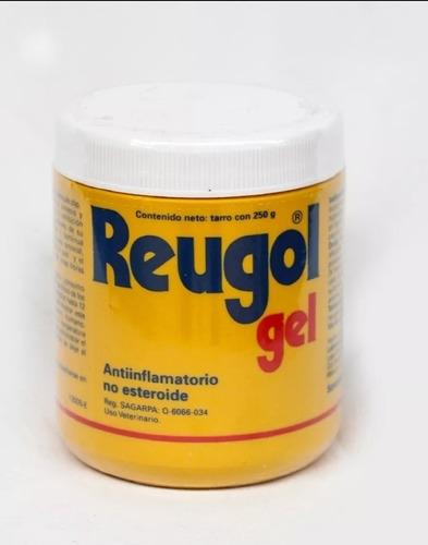 Imagen 1 de 1 de Reugol Gel De 250 Gramos Antiinflamatorio No Esteroide